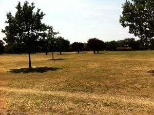 Looking south-east across the cricket pitches, and the site where the open-air swimming pool used to be, to where the tragedy is believed to have happened