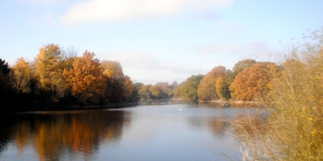 lake-site