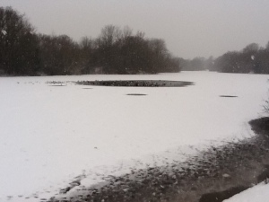 Shoulder of Mutton lake, Wanstead PArk