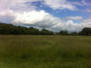 Summer overlooking The Temple in Wanstead Park by Wanstead Meteo
