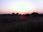 Sunset on Wanstead Flats by Wanstead Meteo