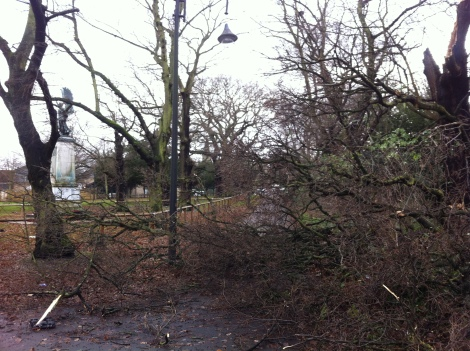 Tree damage by the war memorial in Wanstead High Street by Scott Whitehead