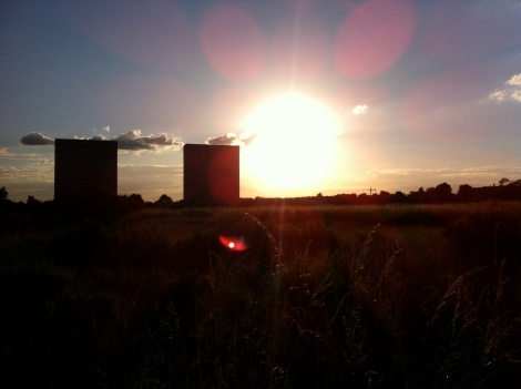 Wanstead Flats sunset