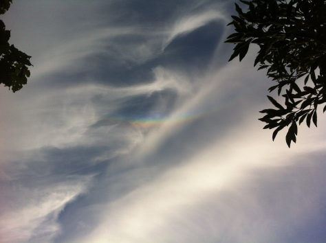 Circumhorizontal arc over Aldersbrook