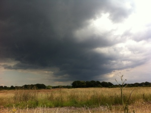 Heavy shower cloud looking east over Wanstead Flats
