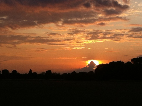Sunset on 31st looking across Wanstead Flats. July was a classic summer month for weather
