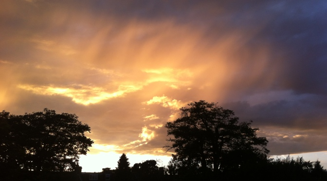 August 2014 – cool, wet and dull