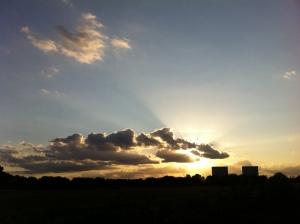 sunset overlooking Wanstead Flats 2nd August