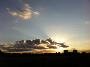 sunset overlooking Wanstead Flats 2nd August