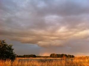 Distant rain cloud looking east on Wanstead Flats
