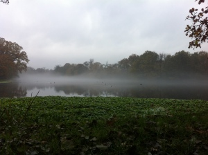 November 22nd by Perch Pond. Drizzle early morning couple with damp air left mist floating above the surface