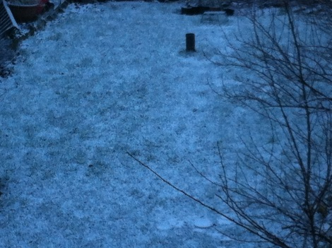 feb3rd snow