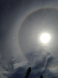 Long spells of cirrus gave a solar halo on the 17th.