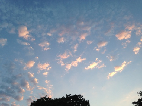 The 30th was wall-to-wall sunshine until late in the evening when alto-cumulus and cumulus were observed