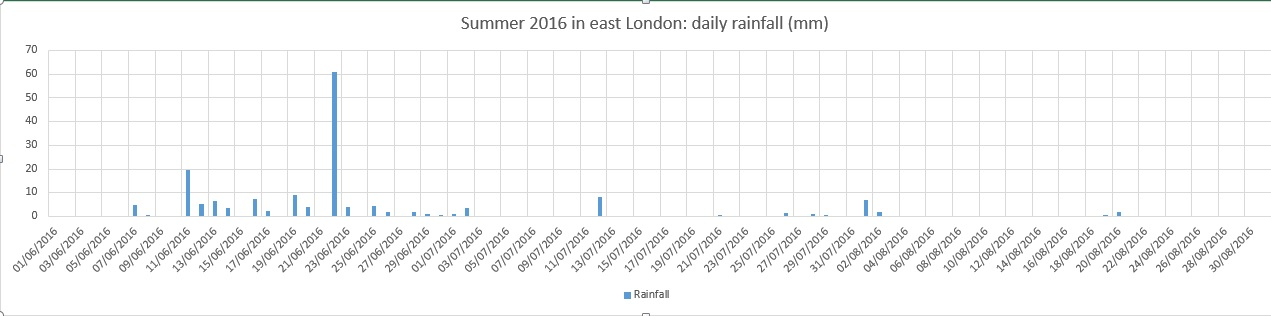 summer 2016 rain