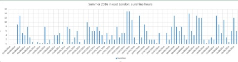 summer 2016 sun