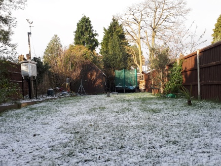 The first snow of the February cold spell arrived on Monday 26th. Because of strong sun most of it was gone by the dusk