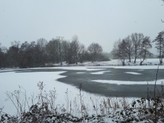 Perch pond, being deeper, took longer to ice over