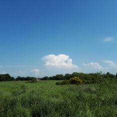 Convective clouds build over Wanstead Flats