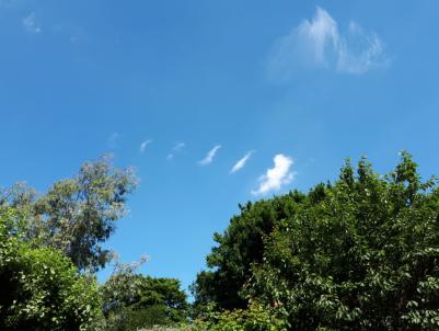 15/06/2017 doll cloud