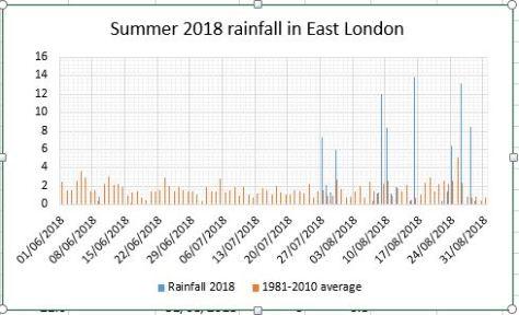 summer 2018 rain
