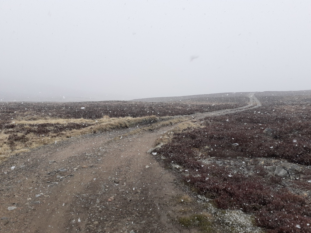 Heavy snow showers really hampered visibility at times