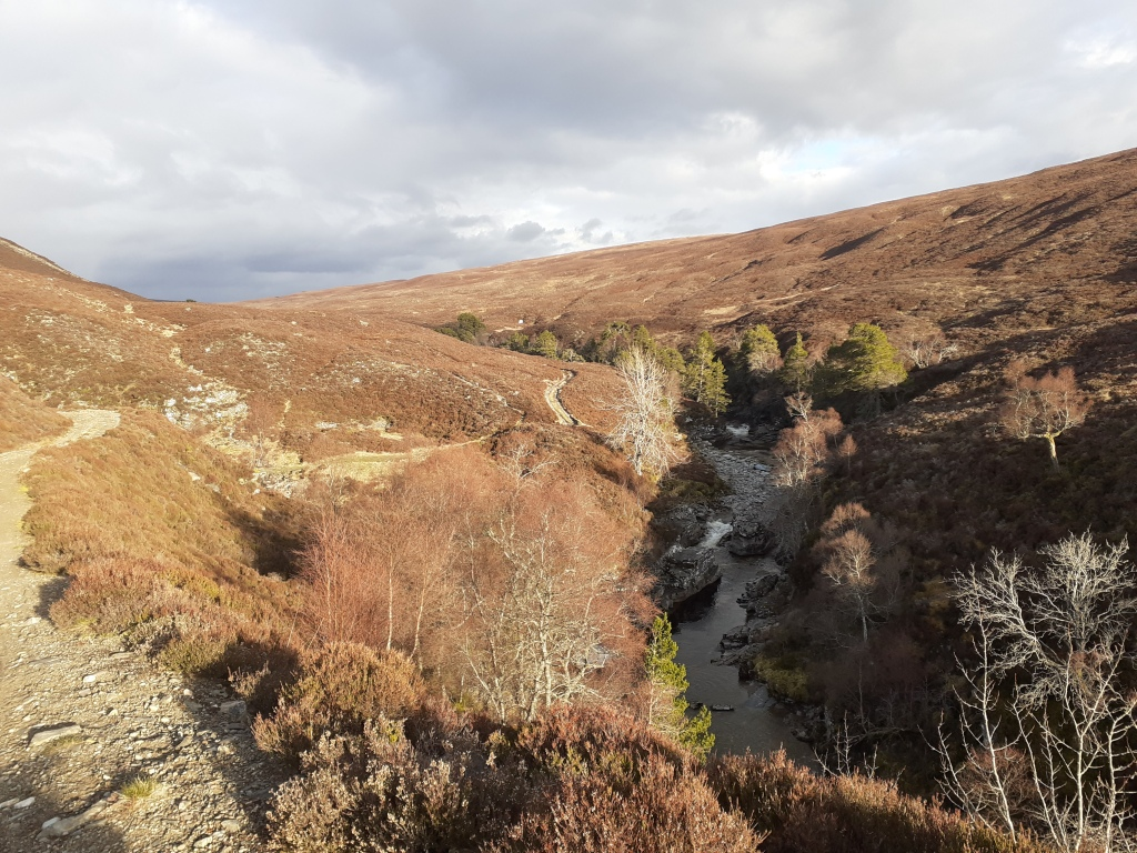 Subtle changes in the landscape as the valley morphs into Glen Feshie