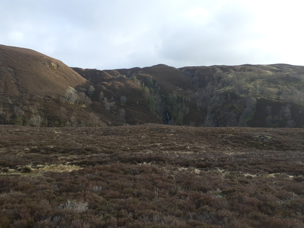 Glen Feshie. The steep-sided valley with abundant woodland reminded me of Val Sesia in Piemonte