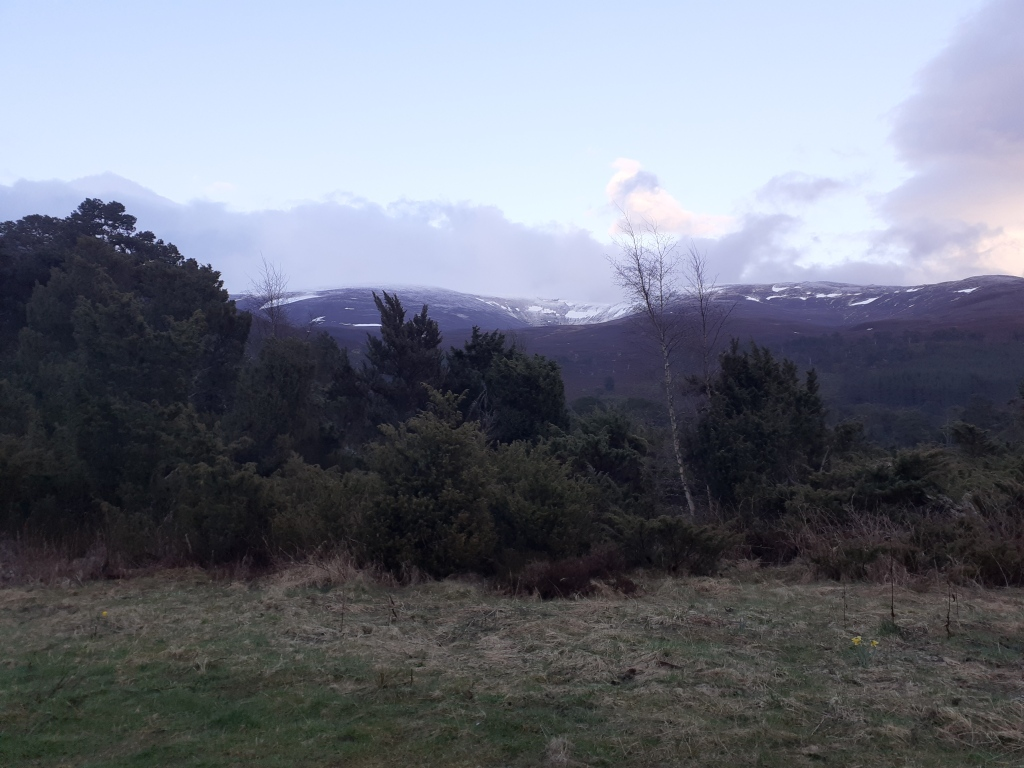 Distant snowy peaks